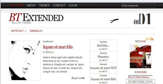BT-Extended-free-newspaper-style-wordpress-theme- wideget-ready-2009