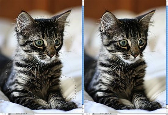 Enchancing Photos with High Pass Filter - preview.