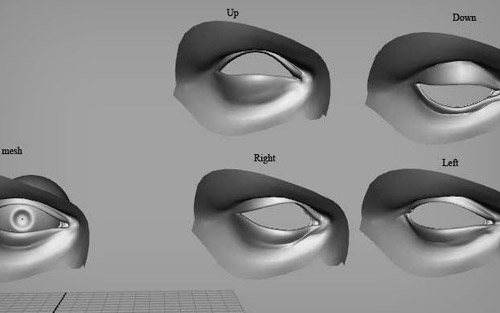 Eye Lid in The Ultimate Collection Of Maya 3D Tutorials