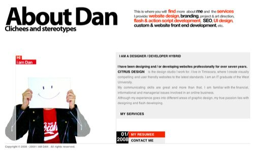 About Dan Ciobanu in Best Practices For Effective Design Of About me-Pages