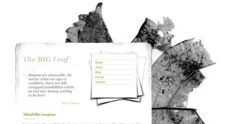 Bigleaf in 100 Free High-Quality XHTML/CSS Templates