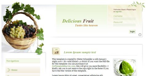 Delfruit in 100 Free High-Quality XHTML/CSS Templates