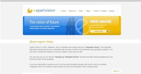 Expertvision in 100 Free High-Quality XHTML/CSS Templates