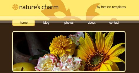 Natures in 100 Free High-Quality XHTML/CSS Templates