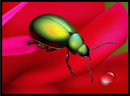 rainbow beetle 42 Stunning Collection of 3D Illustrator Tutorials