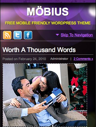mobius 25 Professional Mobile WordPress Themes