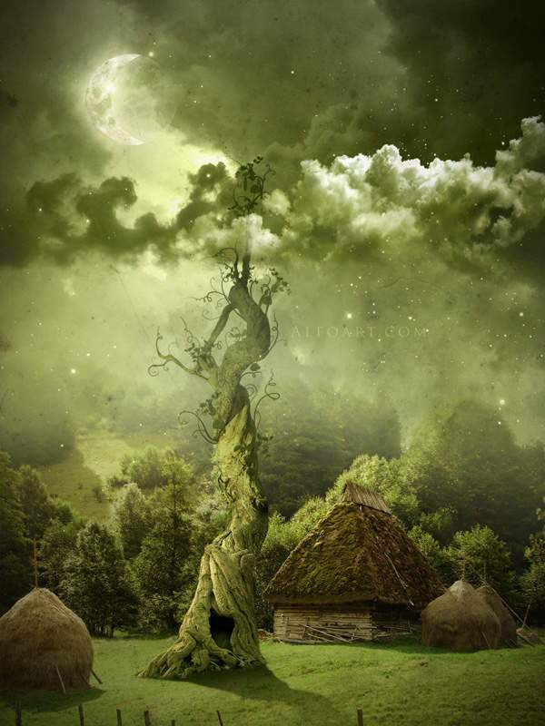 Fairy Night Beanstalk 50+ Latest Photo Manipulation Tutorials in Photoshop