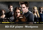Wordpress HD Flv Player