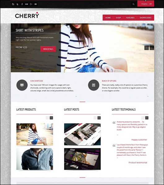 Cherry 20 Best Ecommerce Themes for WordPress Website