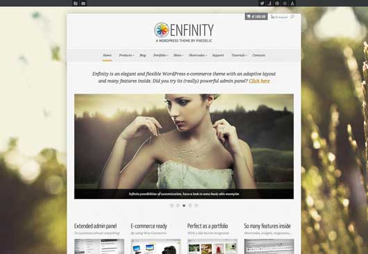 Enfinity 20 Best Ecommerce Themes for WordPress Website