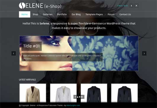 Selene 20 Best Ecommerce Themes for WordPress Website