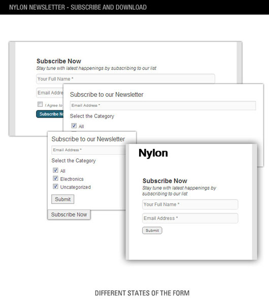 nyLON Subscription form WP Plugin Top 40 Premium Plugins of WordPress