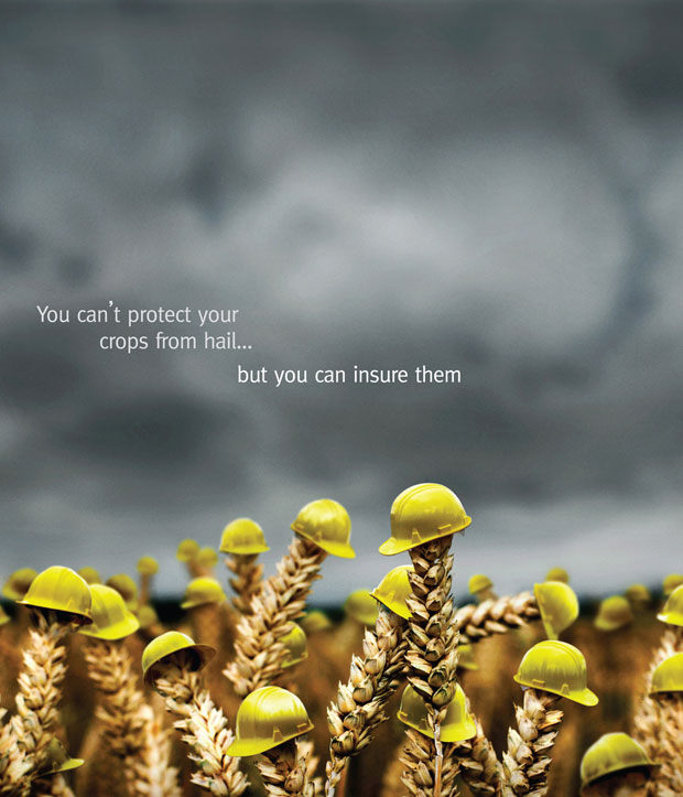 12Insure Your Crops o 60+ Masterpieces Of Creative Advertisements