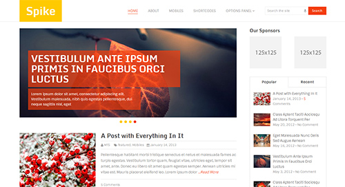 Spike 50+ WordPress magazine themes for news sites