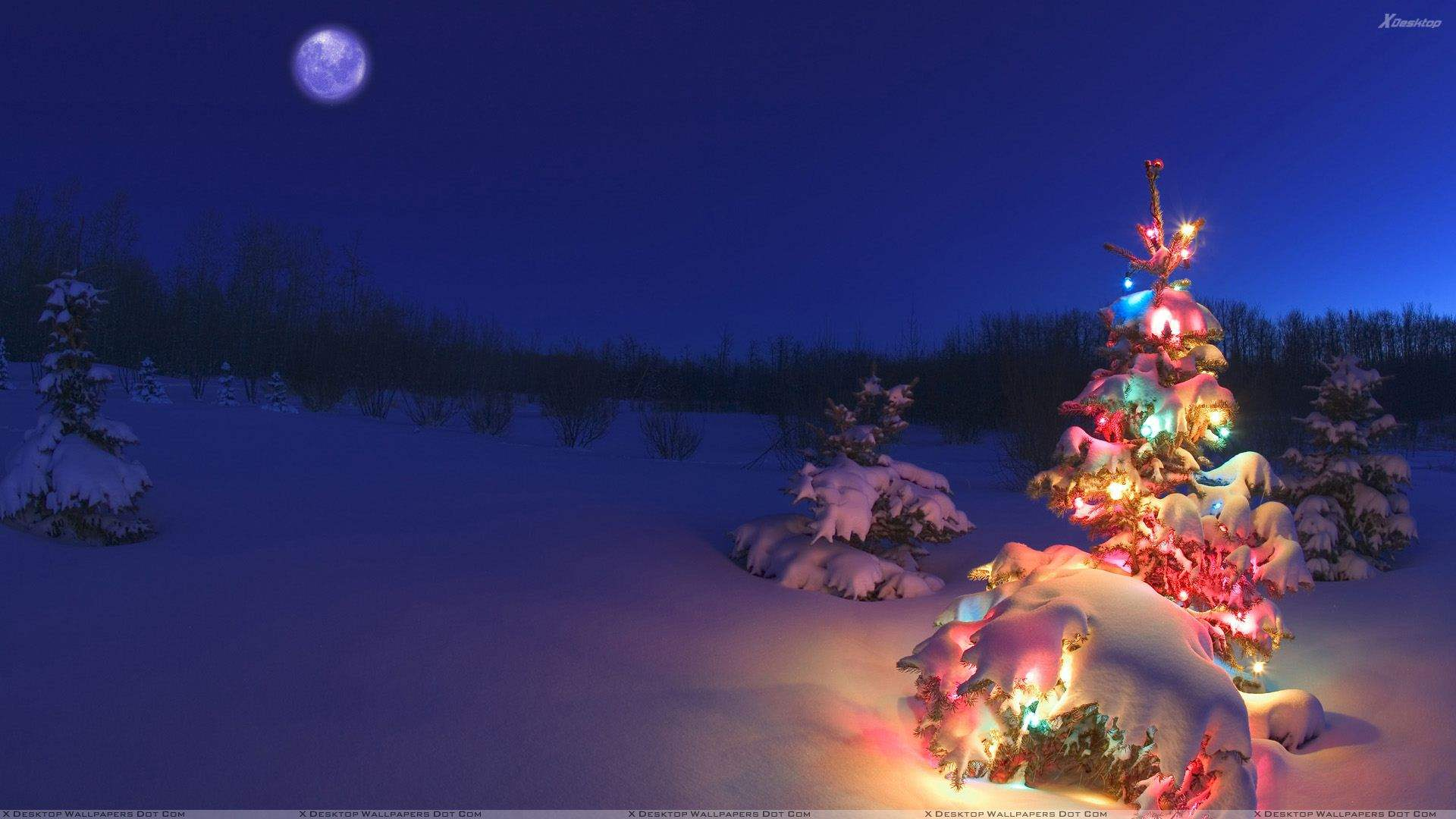 download hd winter and christmas wallpapers photography